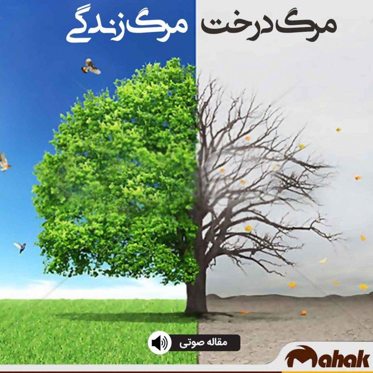 مرگ درخت ،مرگ زندگی