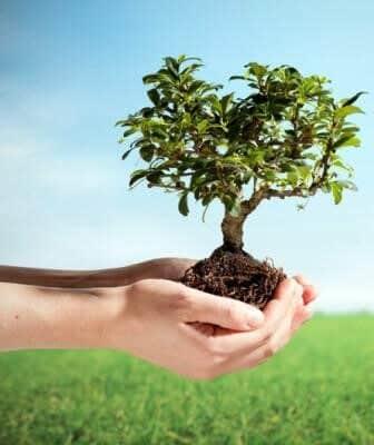 اقدامات رایج در روز جهانی محیط زیست: