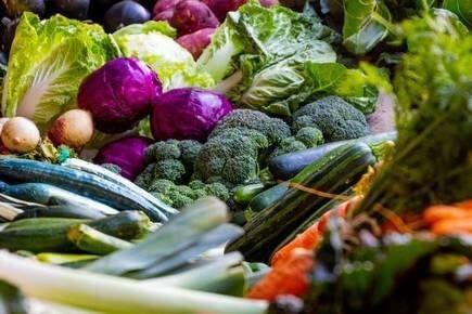 مسیر چهارم. تولید و بسته بندی سبزیجات