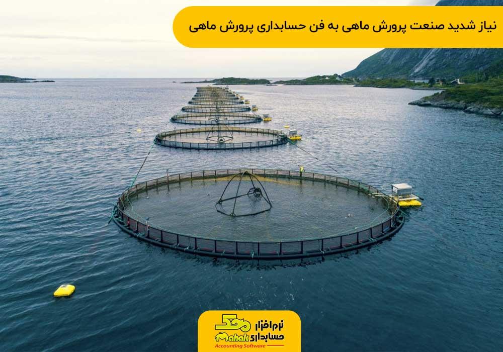 نیاز شدید صنعت پرورش ماهی به فن حسابداری پرورش ماهی
